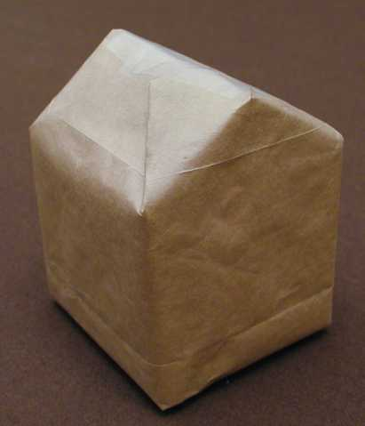 Wraped Milk Carton